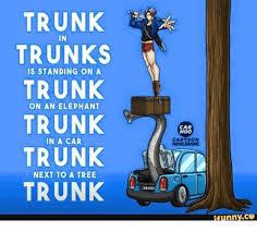 Tree Trunks Meme - trunk in trunks is standing on a trunk on an elephant trunk in a