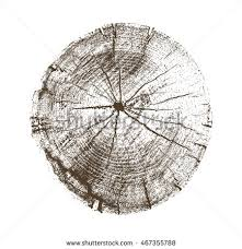 free tree rings vector texture free vector stock