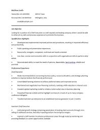 10 ceo resume templates free word pdf