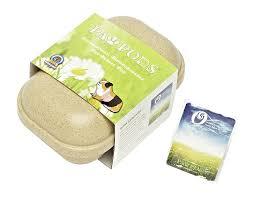 amazon com paw pods biodegradable pet casket small pod pet