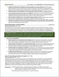 resume format for supply chain executive executive resume service msbiodiesel us executive level resumes executive level resume sample coo resume executive resume