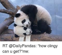 Panda Meme - panda no makeup meme life style by modernstork com