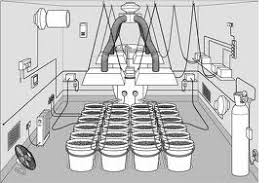 Grow Room Lights 6 X 8 Hydroponic Growroom Setup