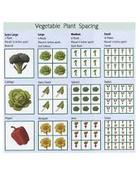 square foot garden layout ideas square foot garden plant spacing home design planning interior