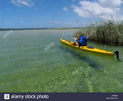 a man kayaking in a yellow kayak in clear shallow water in