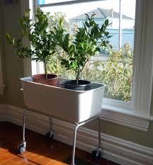Modern Indoor Planters Plant Stand Modern Pots Plant Pots Indoor Entrancing Ideas