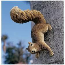 amazon com design toscano simone the squirrel hanging statue amazon com design toscano simone the squirrel hanging statue outdoor statues patio lawn garden