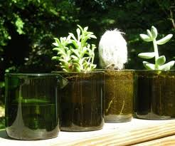 recycled wine bottle planter set w a n t pinterest wine