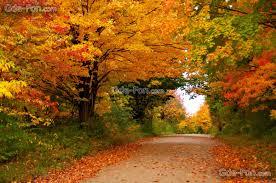 imagenes de otoño para fondo de escritorio fondos de pantalla otoño paisajes para fondo celular en hd 25