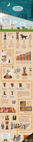 this dogfographic see what i did there chronicles the wonder of