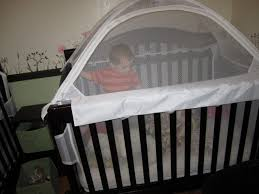 Crib Tent For Convertible Cribs Honey Crib Tents Peace At Last