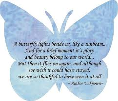 Meaningful Butterfly - best 25 butterfly quotes ideas on arrow quote