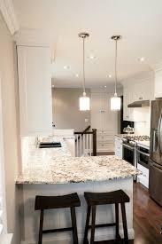 alaska white granite kitchen transitional with french door fridge