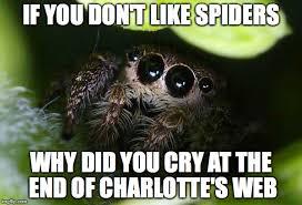Spider Meme - missunder stoood spider memes imgflip