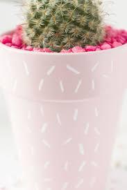 diy pink cactus planter best friends for frosting