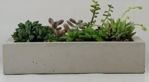 super easy faux concrete pots and planters south thurston