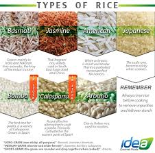 different types of rice around the world food by