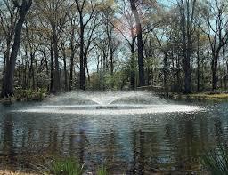 Decorative Pond Kasco Kasco 3400jf Decorative Pond Fountain Five Nozzle