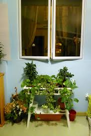 singapore hdb vertical vegetable garden philosophy in the bedroom