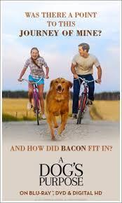 a dog u0027s purpose dvd release date may 2 2017 new dvd u0027s