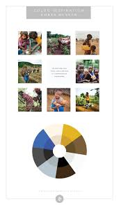 color palette inspiration by industry non profit world