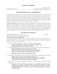 Best Finance Resume by Director Of Finance Resume Vp Finance Resume Examples Top Finance