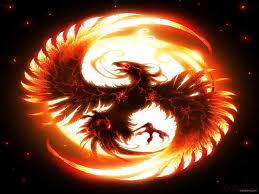 free fire dragon wallpapers free at movies monodomo
