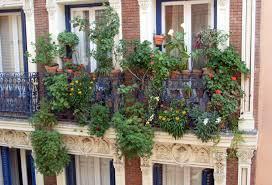 Indoor Garden Design 7 Gorgeous Apartment Balcony Garden Design Ideas Home Of Art