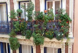 Kitchen Garden Design Ideas Balcony Garden Design Garden Design Ideas