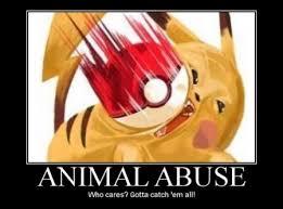 Pokemon Meme Funny - funny pokemon meme pokemon wallpapers and images desktop nexus
