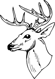 deer head clipart free download clip art free clip art on