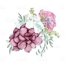 succulent bouquet watercolor succulent bouquet stock vector more images of