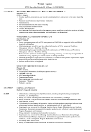 consulting resume exles consultant finance professional 2 resume sle seeking tips 5a