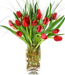 florist atlanta fresh tulip arrangements colors prompt delivery