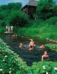 Backyard Swimming Ponds - triyae com u003d natural looking backyard pool various design