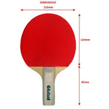 Table Tennis Dimensions Tot Midi Table Tennis Bat U0026 Case Young Junior