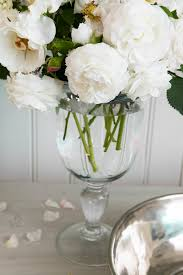 zsazsa bellagio dreams pinterest peony flowers and floral
