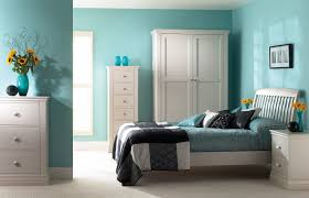 Colors For Interior Walls In Homes by Wall Colour Combination For Living Room Small Bedroom Combinations