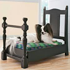 chair into dog bed repurpose me pinterest dog beds dogs and