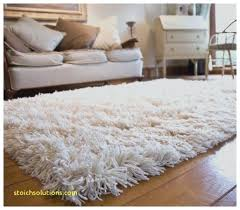 Soft Area Rug Fuzzy Area Rugs White Fluffy Area Rug New Best White Area Rug