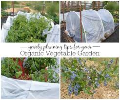 yearly vegetable garden planning how do you plan and organize