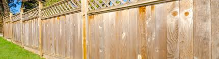 Wooden Trellis Panels Trellis Panels And Garden Fence Panels Torquay And Bodmin Timber