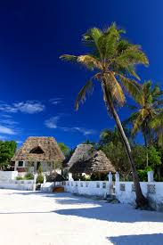 red monkey lodge beach lodge hotel in jambiani zanzibar