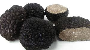 where can you buy truffles black truffles 1lb dava truffles white truffles for sale