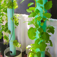 Small Vegetable Garden Ideas Pictures Mountain Gardening Small Space Vegetable Gardening