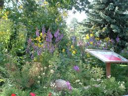 garden design garden design with how to start a spring wildflower