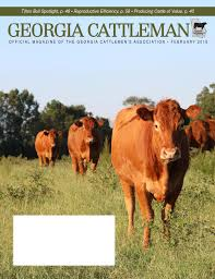 georgia cattleman february 2015 by georgia cattlemen u0027s association