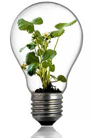how much does it cost to make your home eco friendly hipages com au