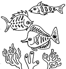 fish black and white clown fish clipart 2 wikiclipart
