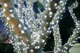 how to light a christmas tree christmas tree pathway lights walkway lights led christmas tree path